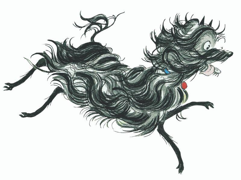 illustration of Hairy Maclary
