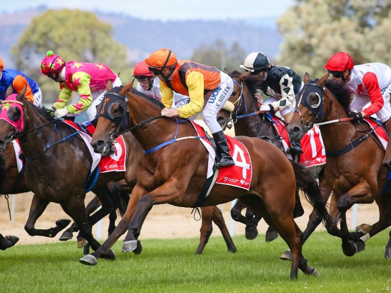 The NSW Government decides not to rescind the Albury Gold Cup half-day holiday