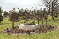 image of bronze sundial at Glenmorus Gardens